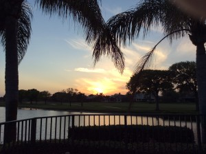 Palm trees and the lake framing the sunset